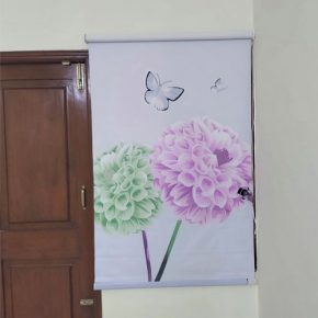 Customized Printed Blinds